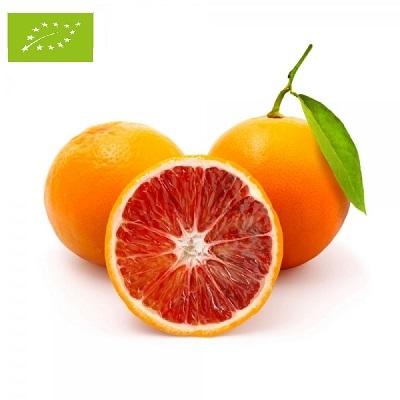 Frutta I Gamma