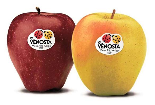 Frutta IGP I Gamma